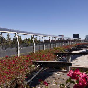 Bridge of Gardens