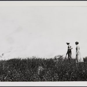 Family members are pictured farming the land in the Summer of 1912.