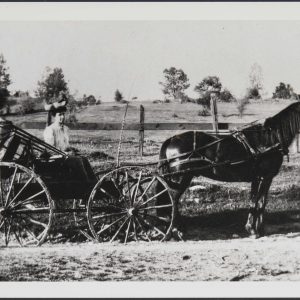 A portrait of Carrie Segerstrom, posing in a typical carriage of the time.